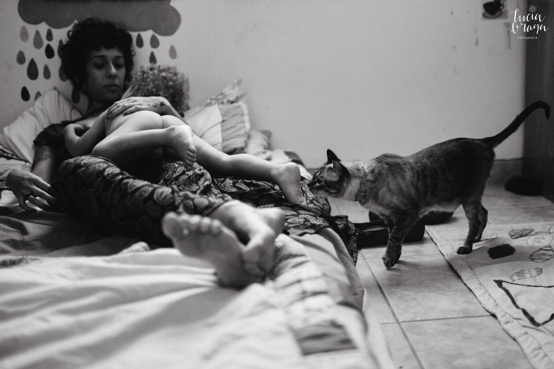 cata, gatos, fotografia documental de familia, fotografo são paulo, fotografo minas gerais, fotografia de família, mãe e filho, real life, dia-a-dia